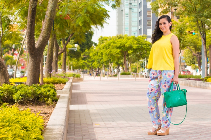 Chapultepec walk