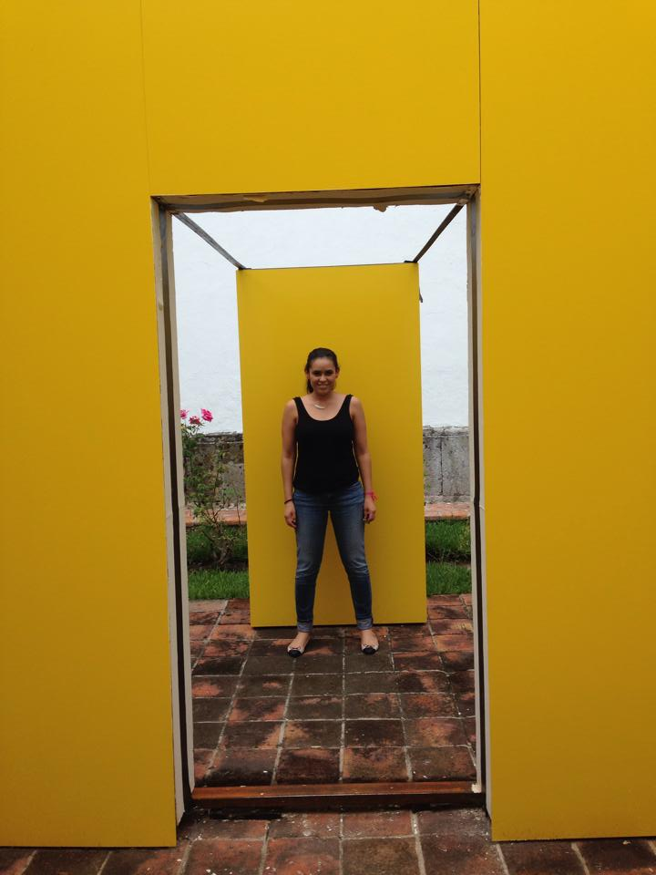 miau standing over yellow structure
